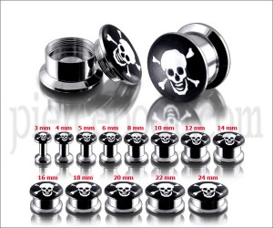 SS Internal Screw Fit With Skull Logo Ear Tunnel